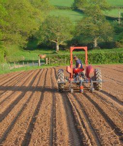 hallwood-farmhouse-tractor